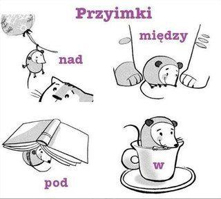 Мы учим польский язык