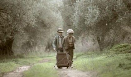 Το μάζεμα της ελιάς. Ένα εκπληκτικό φιλμ για μια ελληνική παράδοση αιώνων