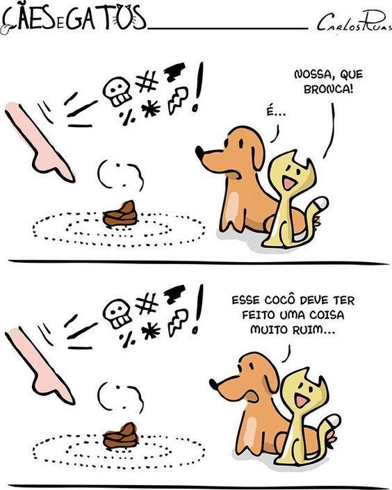 haha <3 #petmeupet #cachorro #gato
