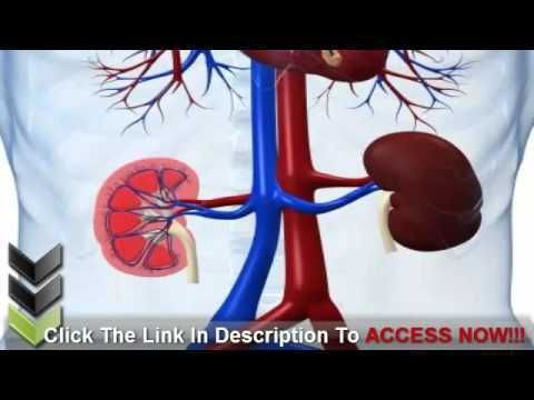Kidney Disease and Diabetes in the Elderly - WATCH VIDEO HERE -> http://bestdiabetes.solutions/kidney-disease-and-diabetes-in-the-elderly-2/      Why diabetes has NOTHING to do with blood sugar  ►►  THE BEST NATURAL TREATMENT FOR KIDNEY DISEASE THAT EXISTS & REALLY WORKS!!! Kidney Disease and Diabetes in the Elderly  The kidneys are two clench hand formed organs situated on either side of the spine. They channel your blood so as...  Why diabetes has NOTHING to do