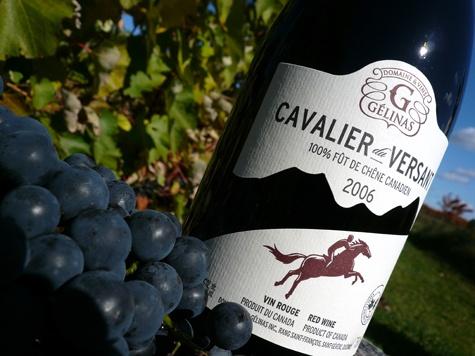 Domaine & Vins Gélinas à St-Sévère