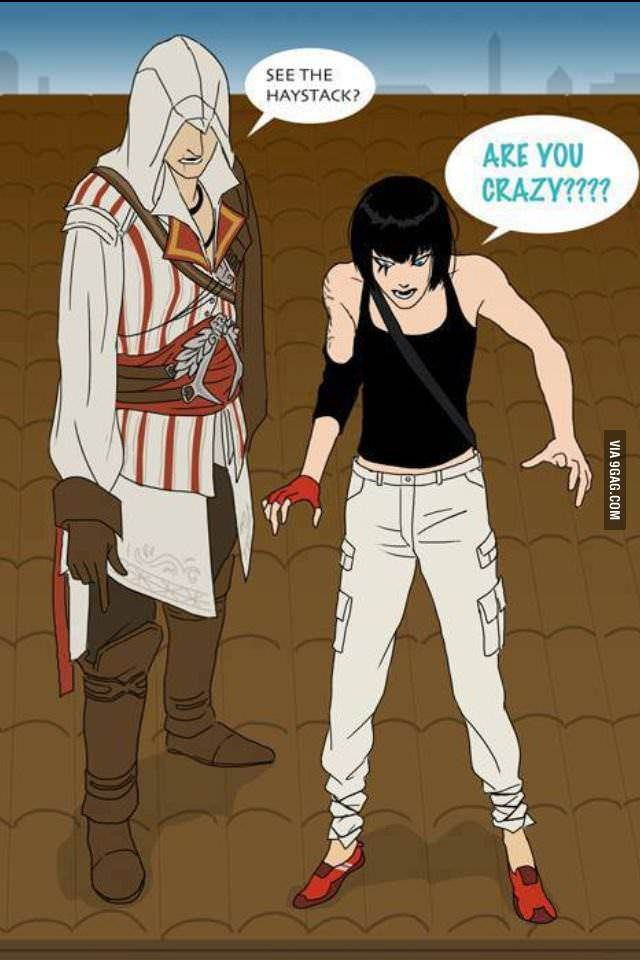 Hahaha! Assasins Creed! #ancestorprobs #lovethewall #jumpinahaystack