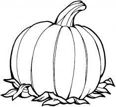 plain pumpkin coloring pages - photo#24