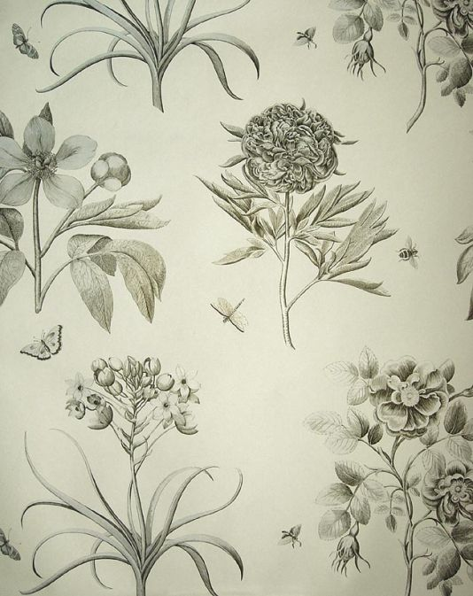 Etchings & Roses Wallpaper Black and white floral wallpaper with hints of gold