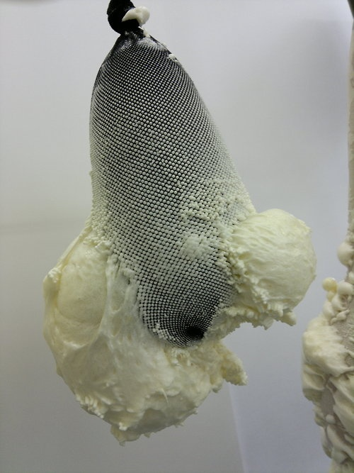Expanding Foam and Fishnets   -Helen Page