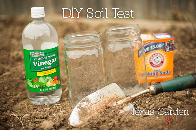 Easy Soil Test with Baking Soda and Vinegar! If your soil bubbles when you add vinegar it's alkaline. If it bubbles when you add water and baking soda, it's acidic!