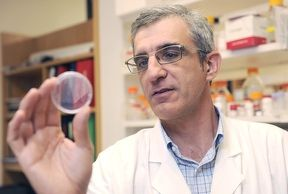 Lung Cancer Genetic Vulnerability Discovered By UT Southwestern Researchers Lays Foundation For New Drug Options Potential: http://bionews-tx.com/news/2013/04/04/lung-cancer-genetic-vulnerability-discovered-by-ut-southwestern-researchers-lays-foundation-for-new-drug-options-potential/