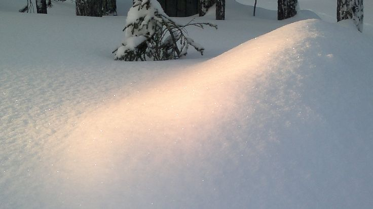 2012   Sunbeam at snow, Äkäslompolo