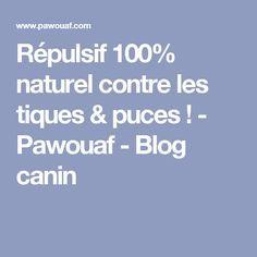 Répulsif 100% naturel contre les tiques & puces ! - Pawouaf - Blog canin