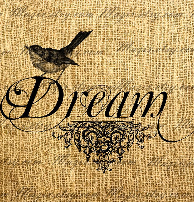 Vintage bird on a decorative word calligraphy dream