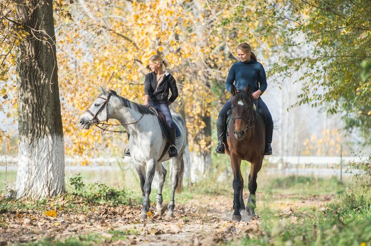 Horseback Riding in Romania
