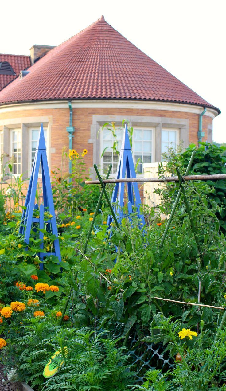 Phipp's Conservatory and Botanic Garden Botanical