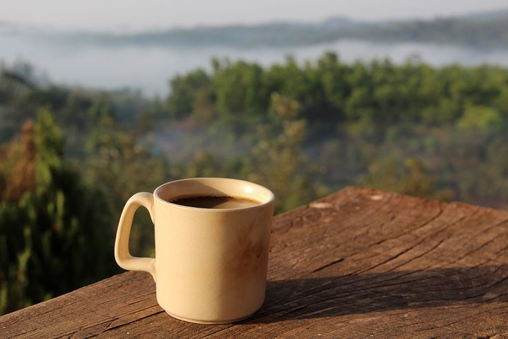 Looking at this picture I can almost smell the coffee right in that cup! #CopperMooncoffee