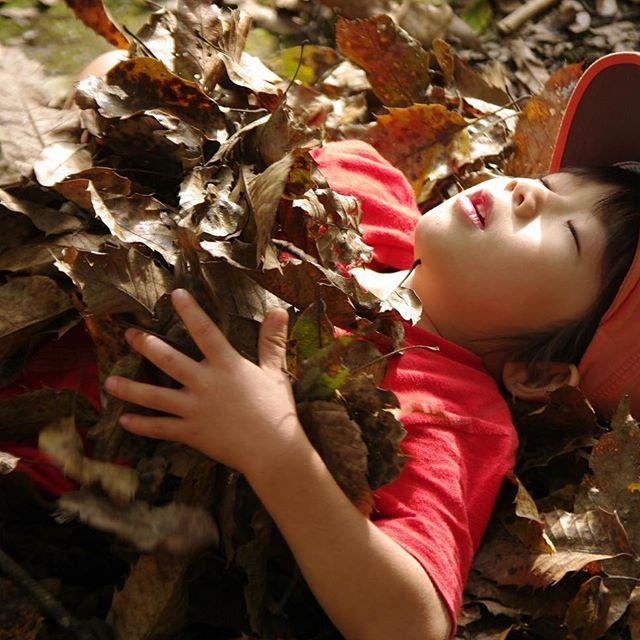 【morinosodachiba】さんのInstagramをピンしています。 《落ち葉のたのしい季節。 子どもたちは 毎日森で過ごします。 まさに 全身で自然を感じています。 毎日だから わかること 毎日だから 感じられること 毎日だから 伝わることがある。 自然がもつ力を存分にかりて 子どもたちと育ちあっています。 落ち葉をベッドに 寝転ぶ耳には アオゲラの鳴き声と 木を突く音が届いてきます。  #ようちえん #自然 #幼児教育 #子ども #森 #毎日 #落ち葉 #秋 #紅葉 #全身で #健やか #気持ちいい #アオゲラ #森の育ち場 #いっぽいっぽ》