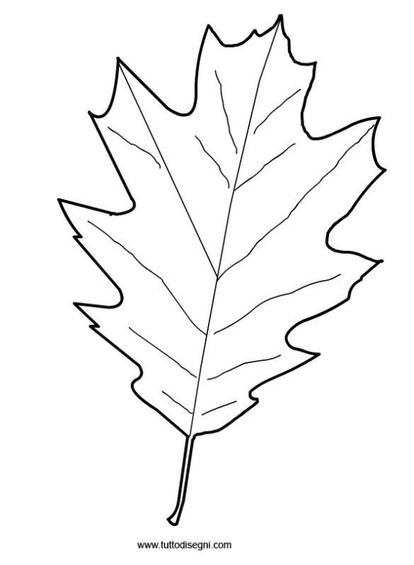 foglia-autunno1