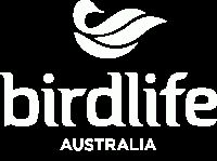 Backyard Bird   BIRDS in BACKYARDS (Australia). Take part in this survey to help monitor changes in the distribution and abundance of the complete range of birds that live where people live.