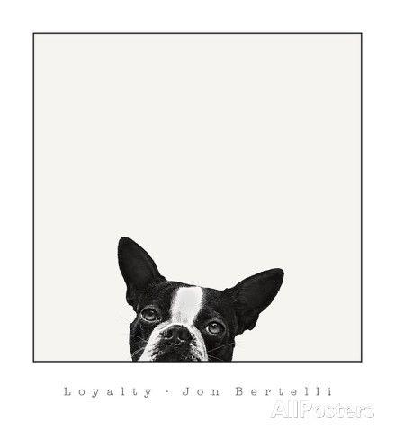 Lojalitet Kunst av Jon Bertelli hos AllPosters.no
