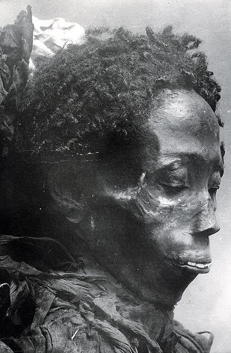 Mummies and mummy hair from ancient Egypt. | Mathilda's Anthropology Blog.