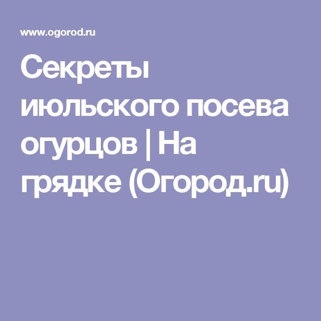 Секреты июльского посева огурцов | На грядке (Огород.ru)