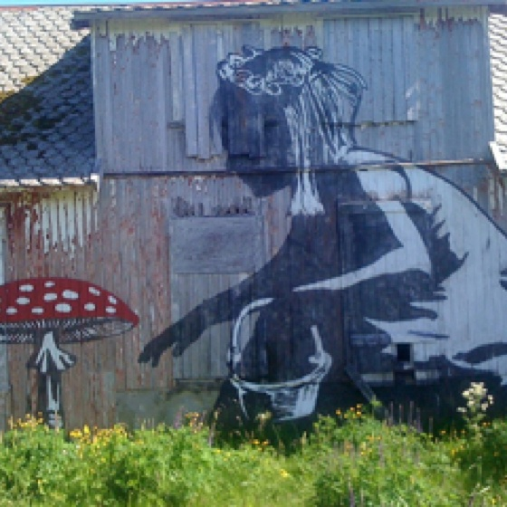 StreetArt Lofoten. Beautiful, in the middle of nowhere!