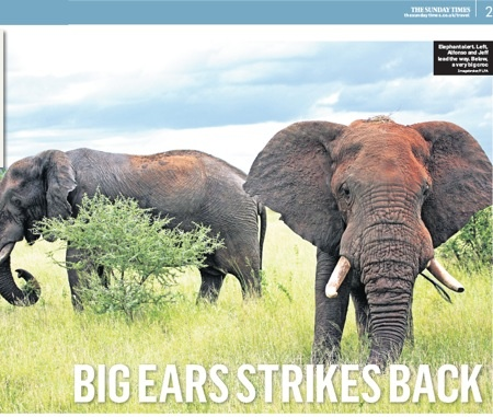 """According to Chris Haslam (Sunday Times):""""The GORONGOSA NATIONAL PARK is Mozambique's greatest wonder— Africa in miniature, with an ecosystem that looks like the divine prototype."""". Read the article here:http://bit.ly/SPM3NZ"""