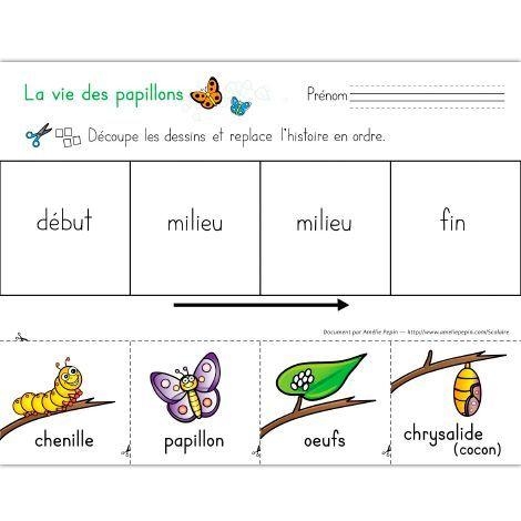 Fichier PDF téléchargeable Versions en couleurs et en noir et blanc incluses Niveau préscolaire 2 pages  L'élève découpe les images et replace l'histoire en ordre pour former la vie du papillon, soit: oeufs, chenille, chrysalide et papillon.