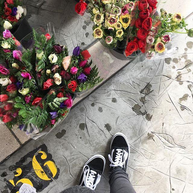 Du rouge, du rose, du violet. Toutes les couleurs que j'adore pour les fleurs. Dommage qu'il y est des vieux bouts de papiers qui gâche la photo 😔. . . #flower #flowers #pink #red #purple #street #basket #vans #shoes #latergram