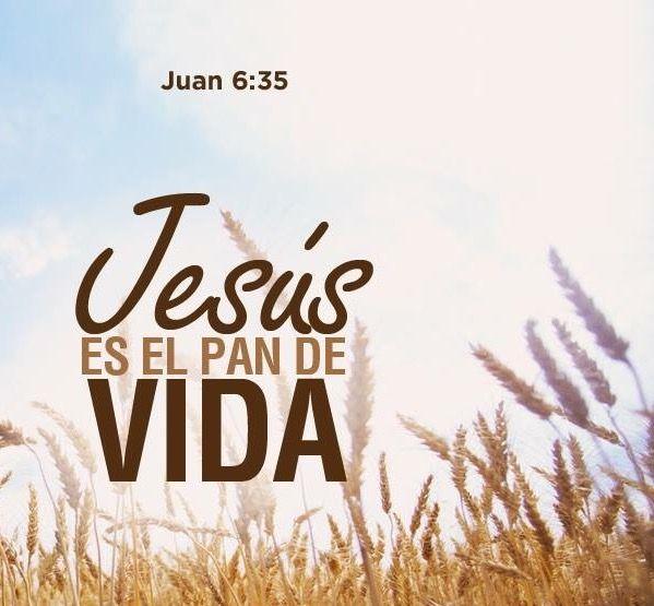 Juan 6:35 Jesús les dijo: Yo soy el pan de vida; el que a mí viene, nunca tendrá hambre; y el que en mí cree, no tendrá sed jamás.♔