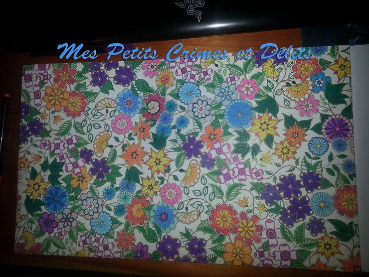 28 best mes coloriages anti stress images on pinterest for Le jardin secret livre