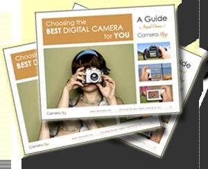 Thinking of a Bridge Camera? – Nikon P100 Review - Beginners Photography Blog : Beginners Photography Blog