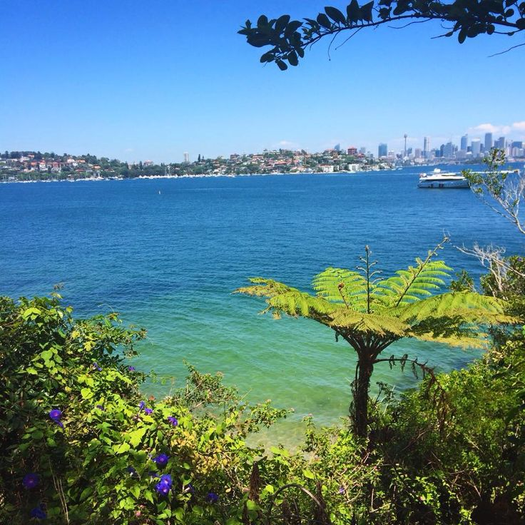 hermitage, foreshore, walk, track, sydney, harbour, eastern suburbs, coastal, bayview hill, nielson park, beach, swim, vaucluse