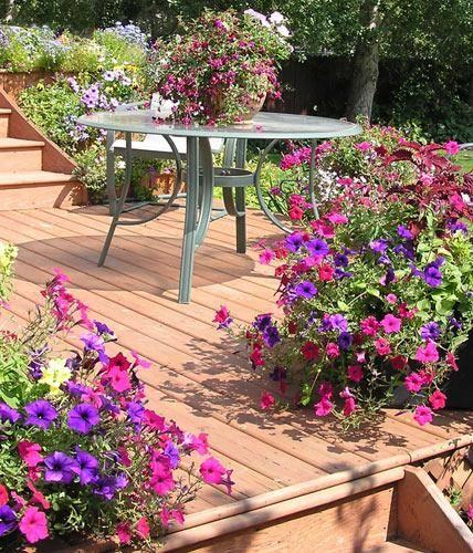 die 25 besten douglasie terrasse ideen auf pinterest. Black Bedroom Furniture Sets. Home Design Ideas