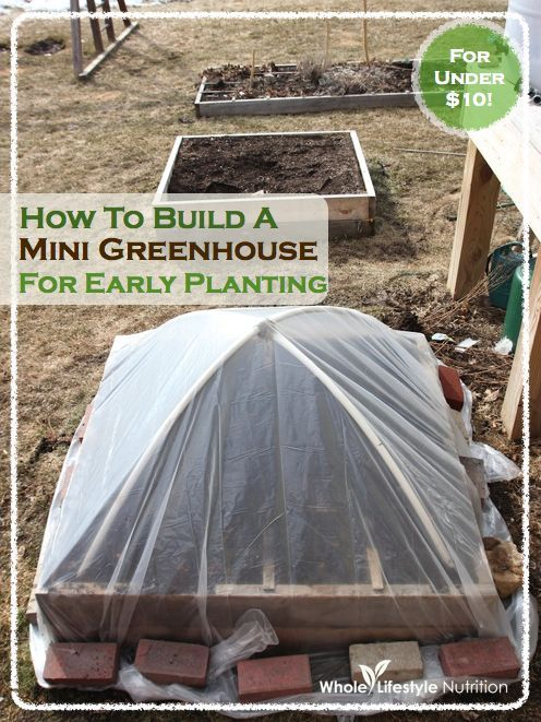 How To Build A Mini Greenhouse For Early Planting