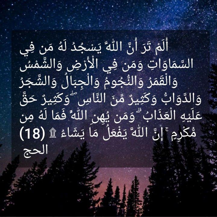 Pin By Muna Abu Dalbouh Collection On Quran Kareem Hadeath القرآن الس ن ة ومنوعات اسلامية Quran Translation Quran Translation