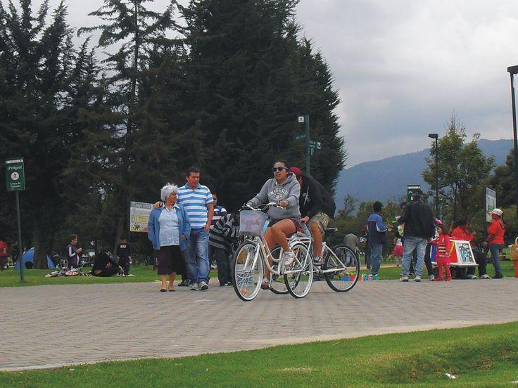 Una de las actividades más predominantes dentro de este parque es montar en bicicleta. Hasta Julio del 2013, según las estadísticas de movilidad en Bogotá, la bicicleta es más utilizada por los estratos 1, 2 y 3 mientras que en los estratos 4 y 5 sólo el uno por ciento hace uso de ésta.   Para más información: http://agendabogota.com.co/2013/07/30/cifras-de-interes-sobre-el-uso-de-la-bicicleta-en-bogota/