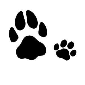 12 Sweet Paw Print Tattoo Designs CreativeFan This is what I'm aiming for.. one dog paw, one cat paw.