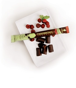 Theobroma dark chocolate bar: Burst of Raspberry.... taken to carrying this in my purse for chocolate emergencies!