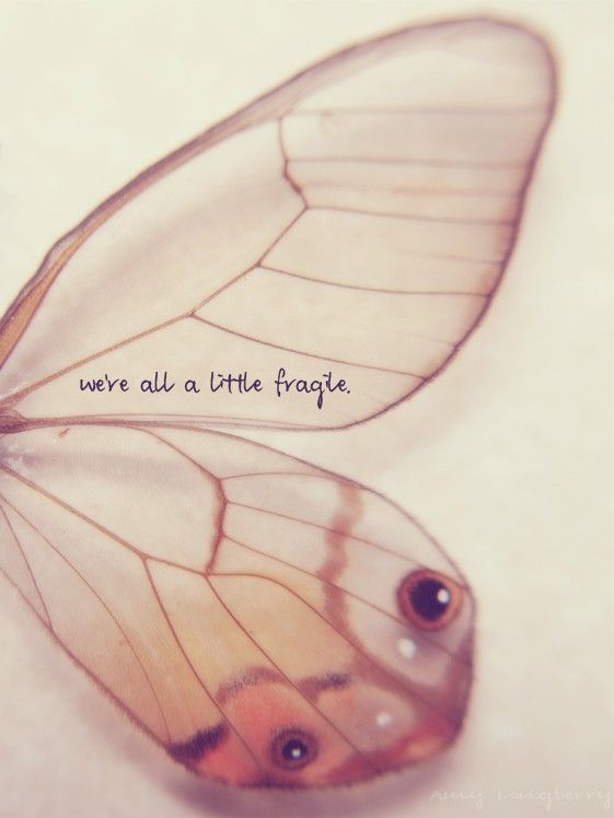 We're all a little fragile...