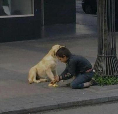 Kid with a Heart of Gold !  Homeless kids shares his food with homeless dog.