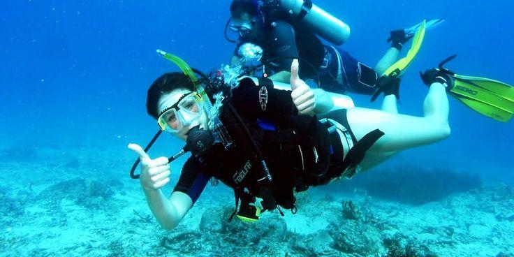 ● Halkidiki Chalkidiki Diving - Guided Tours & excursions ~ Interesting, unique historic, adventurous, archaeological and religious tours in Thessaloniki and Northern Greece!  ● Χαλκιδική Υποβρύχια Κατάδυση Θεσσαλονίκη - Ξεναγήσεις και μοναδικές εκδρομές με ιστορικό, αρχαιολογικό, θρησκευτικό χαρακτήρα αλλά και για αναψυχή!  ● #halkidiki #chalkidiki #diving #underwater #tour #greece #guided #tours #guide #historic #tour #leisure #adventure #χαλκιδικη #ξεναγησεις #εκδρομες #ξεναγος