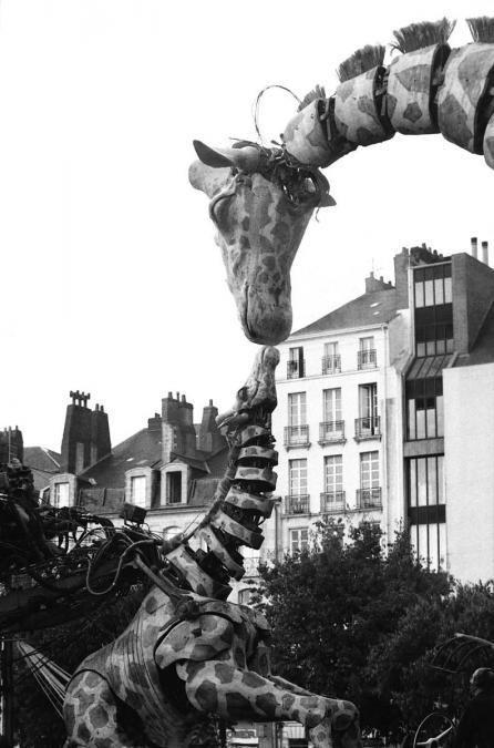 La girafe de Royal de Luxe