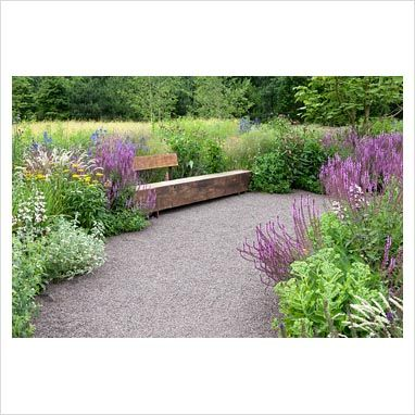 purple wooden bench | ... wooden bench. - GAP Photos - Specialising in horticultural photography