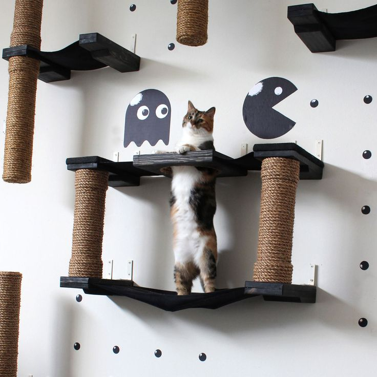 9 best perchoirs pour chat images on pinterest kitty cats cat window and hanging beds. Black Bedroom Furniture Sets. Home Design Ideas