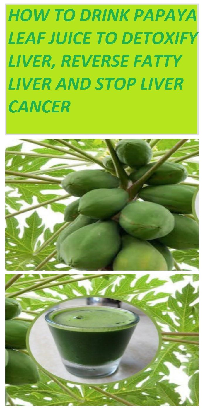 Cancer herbal liver treatment - Papaya Leaves Are One Of The Best Natural Remedies For Dengue Fever But Scientists Have Discovered That They Could Cure Cancer As Well
