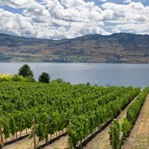 The world's 10 most affordable wine destinations Canada BC's Okanagan Valley (and Ontario's Niagara peninsula, and up-and-coming wineries in Nova Scotia, Quebec, Pelee Island and Prince Edward County in Ontario.)