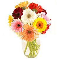 Stunning Gerberas in Vase to Bangalore  Rs. 700 / USD 11.67