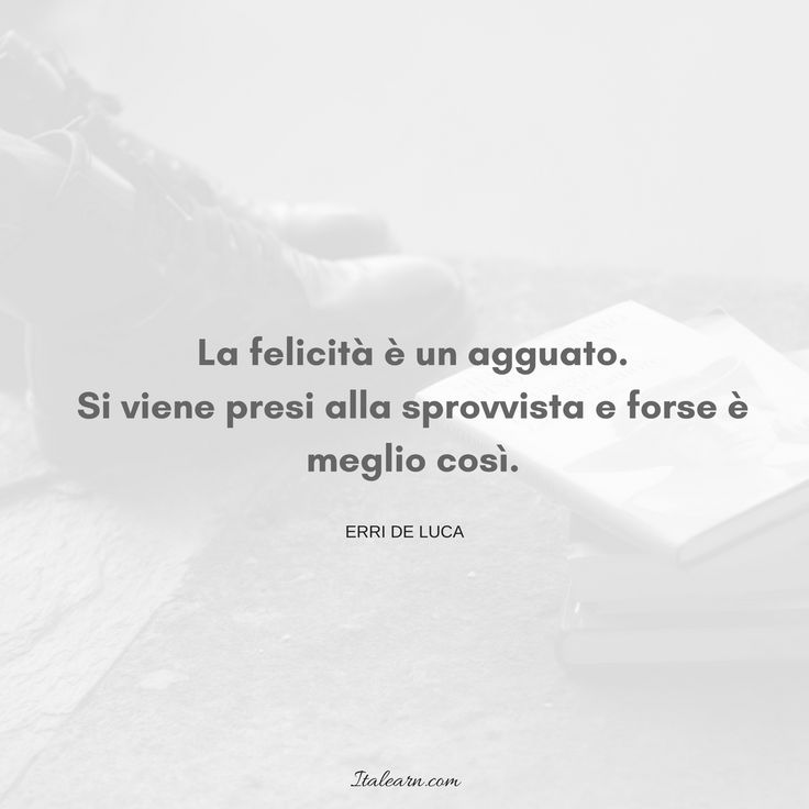 Italian quote by author Erri de Luca: happiness is an ambush. It takes you unawares, and maybe that's the best thing.
