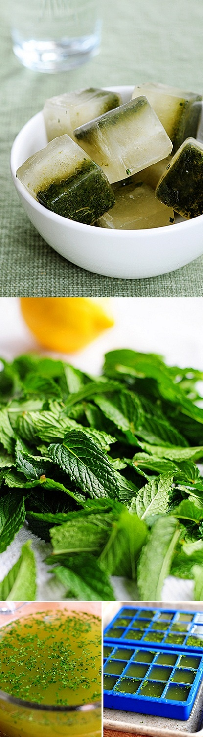 Nifty lemon-mint ice cubes - totally refreshing