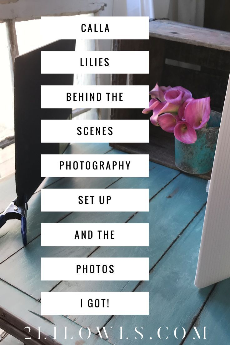 Behind the scenes photography set up and photos! Photography workshops, photography how-to, lightroom presets.