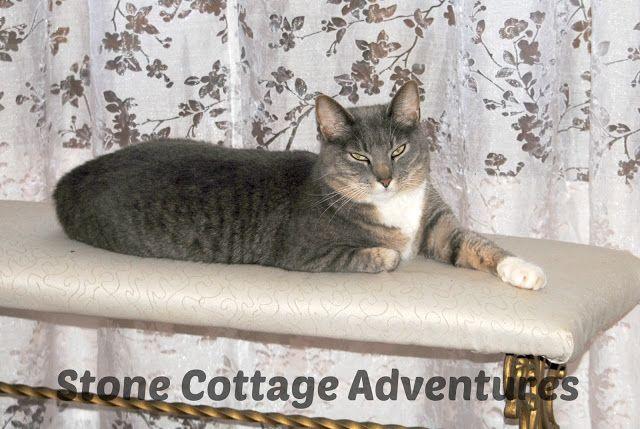Stone Cottage Adventures: Katherine Elizabeth